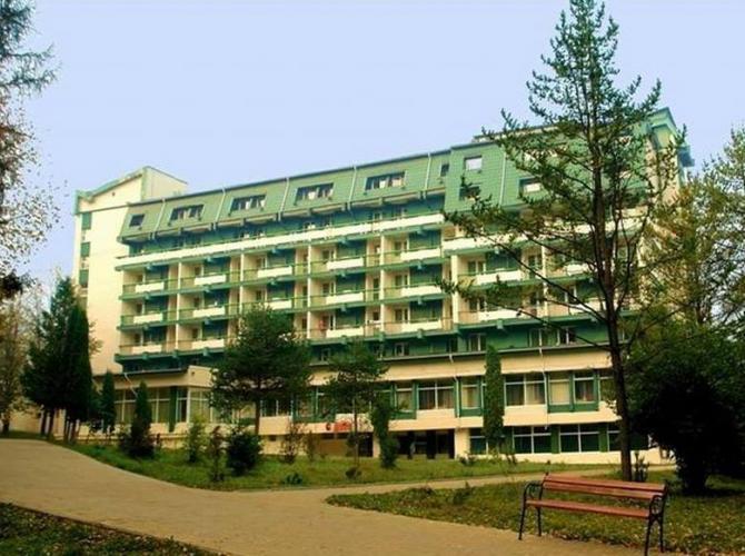 Hotel Bradul